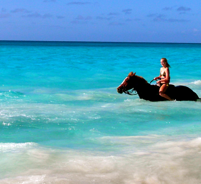 Horseback riding on the beach fit body now for Places to go horseback riding near me